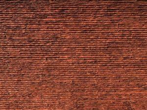 Pangolin stego Dekoratif Fiber Taş Duvar Panelleri